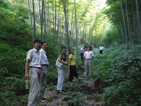 学习,并游览溧阳南山竹海风景区.